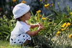 toddler playing in a flower garden